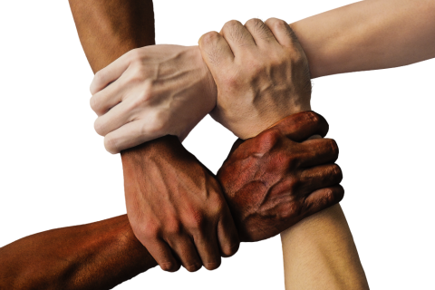 Hands United
