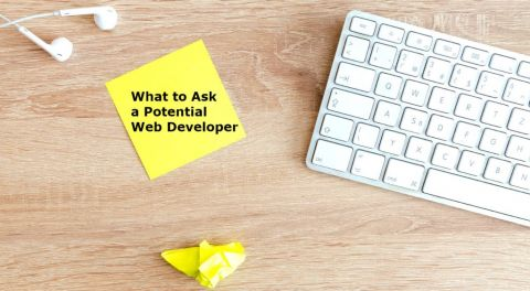 How to Trust Your Web Developer